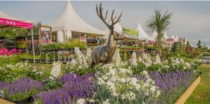 Gardening Scotland 2018 – the national gardening and outdoor living Show.